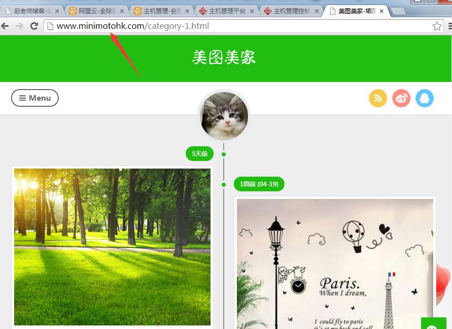 网站上线后效果图.png