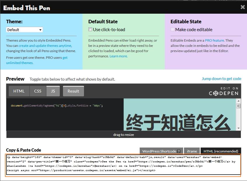 codepen上面的代码引用到自己的网站上.jpg